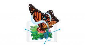 butterfly-ar